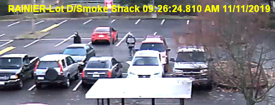 Suspects in car theft