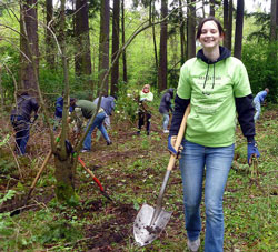 Students cleaning up invasive species at Gold Park