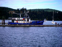 "marine research vessel the, ""Indigo."""