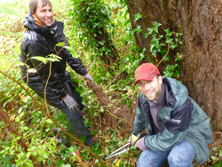 Edmonds CC instructor Daniel Griesbach and friend Jim Belles clean up invasive species at Gold Park.